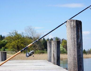 Long Fishing Pole vs Short
