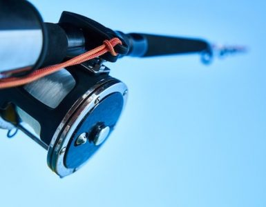 Saltwater vs Freshwater Fishing Rods
