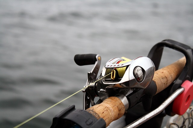 Sport Daiwa Fishing Water Baitcast Reel Activity