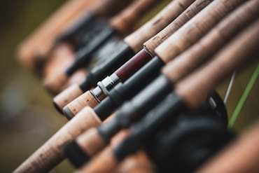 Best Salmon Rod For The Money