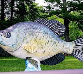 What Time Of Year Do Crappie Spawn