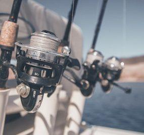 Best 4000 Size Saltwater Spinning Reel