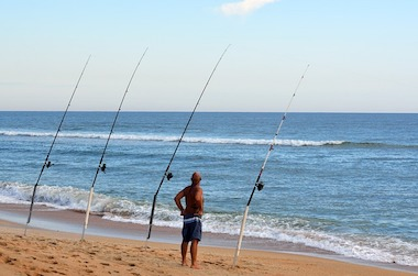 Best Surf Casting Rod For The Money