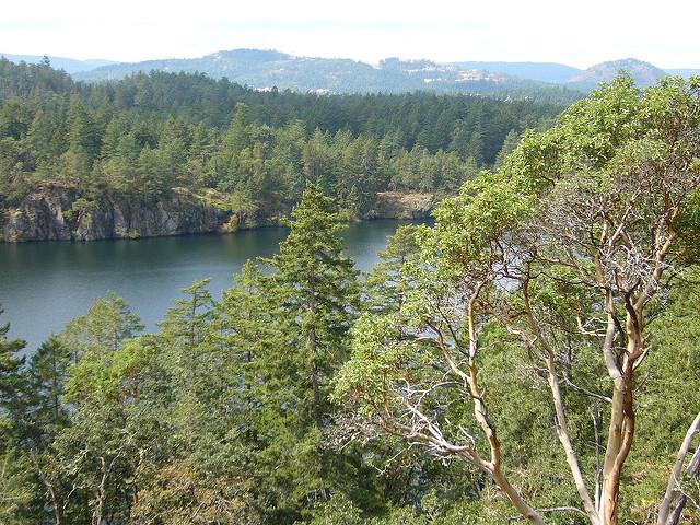 thetis lake canada