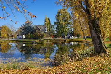 large outdoor pond