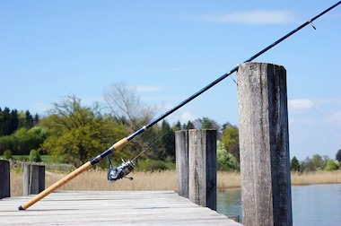 Best Fishing Rod for Redfish & Trout